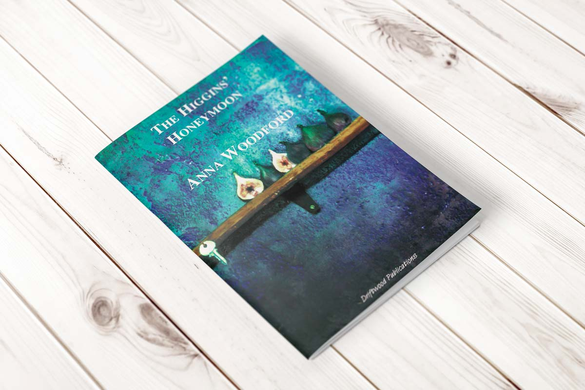 Book cover for The Higgins' Honeymoon by Anna Woodford