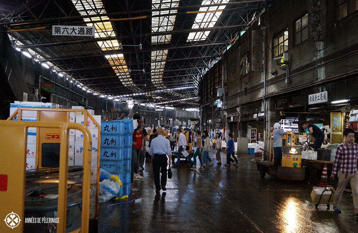 Tsukiji fish market tokyo a travel guide for Japan fish market
