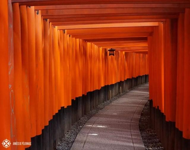 The red torii gates of the Fushimi Inarai Taisha Shrine in Kyoto
