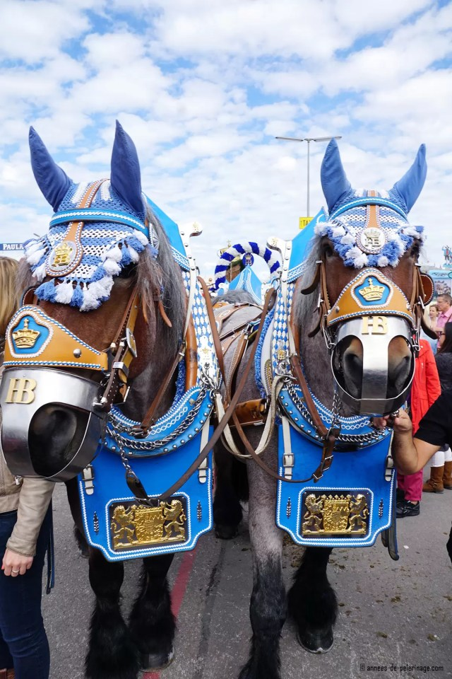 Horses at the oktoberfest parade in Munich