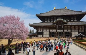 The best things to do in Nara, Japan and around Nara park japan