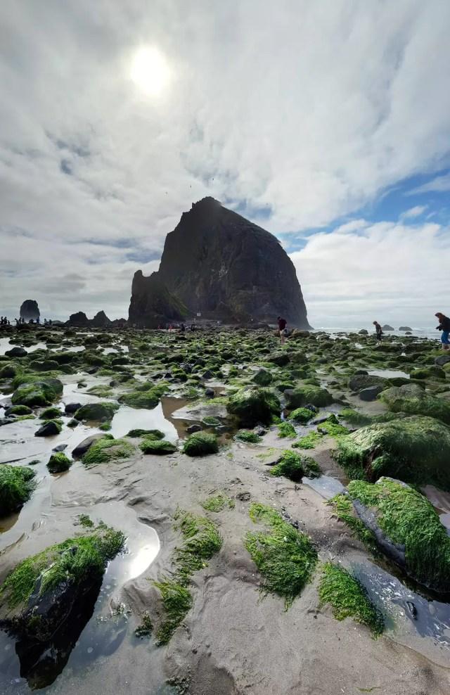 Haystack Rock at Cannon Beach, Oregon