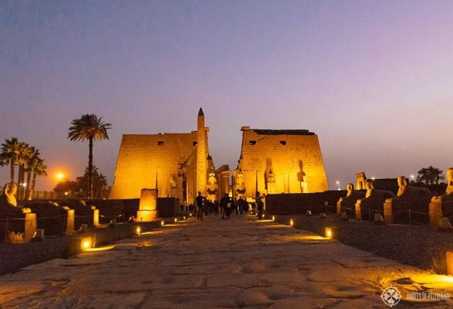 Luxor temple at nigh with the alley of sphinxes