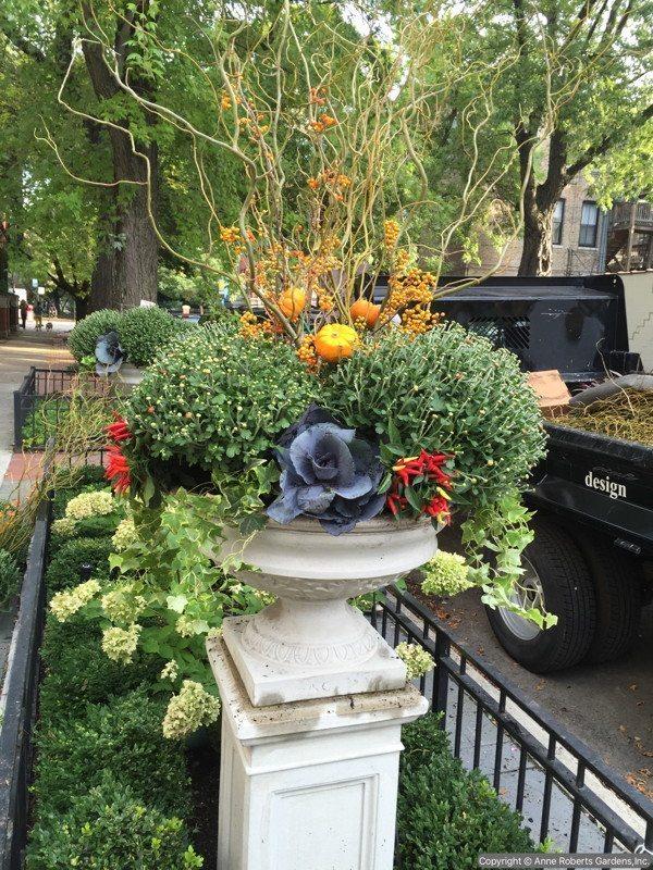 Anne Roberts Gardens AnneRobertsGardensIMG_4241