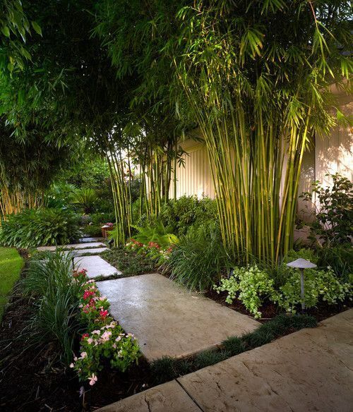 Anne Roberts Gardens landscaping-ideas-for-privacy-3