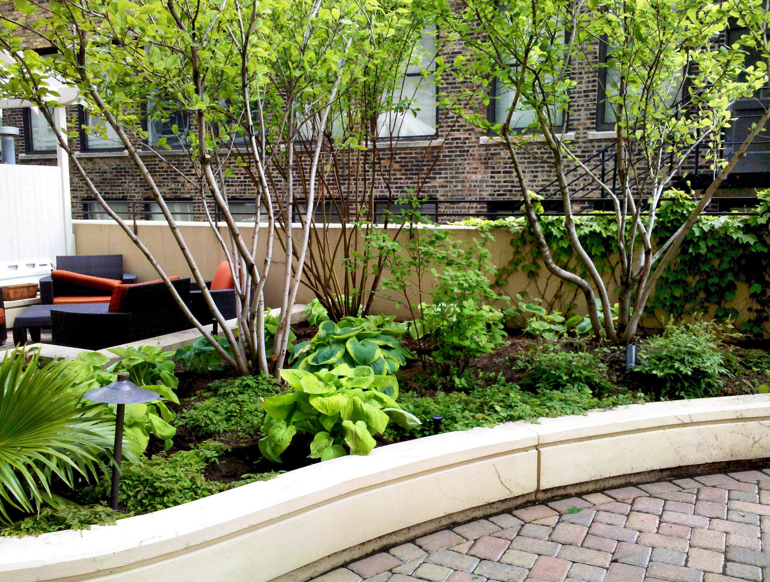 Anne Roberts Gardens rooftop-gardens-2
