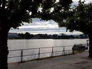 Blick vom Beueler Ufer über den Rhein nach Bonn