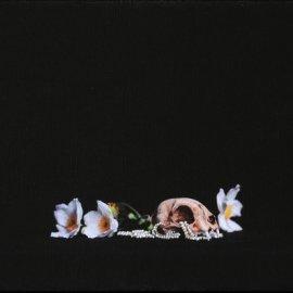 Stilleven-met-parels-600-x-413