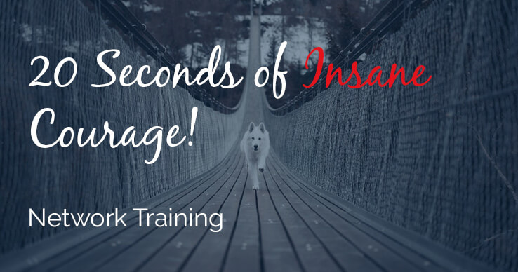 insane courage network marketing training