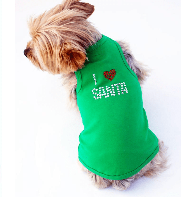 Dog Squad Clothes – Not Only for Dogs!