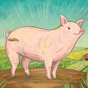 Hero Pig: concept for Fair Oaks Farm