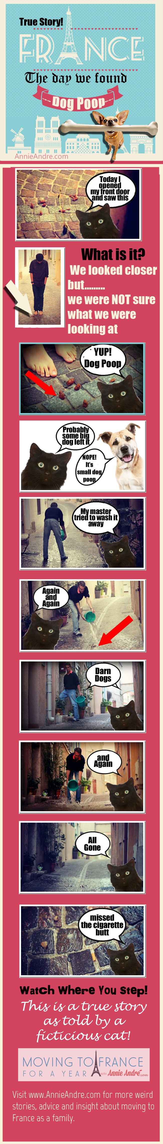 true story; The day we found Dog Poop on our front doorstep in France AGAIN!