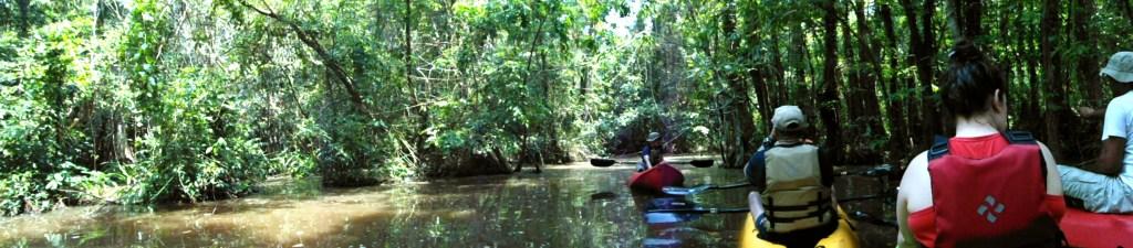 Punta Izopo tour to explore the mangrove in kayak