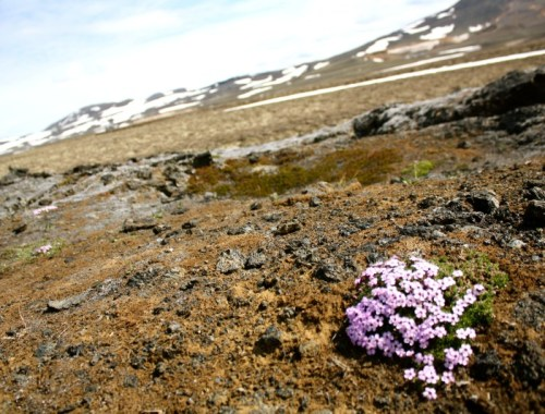 Iceland_Itinerary