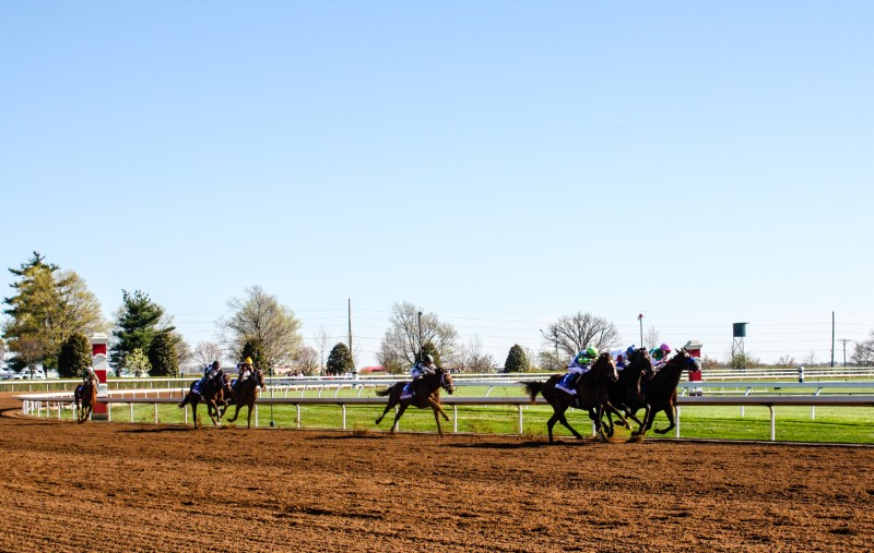 USA Road Trips: Kentucky Horse Race