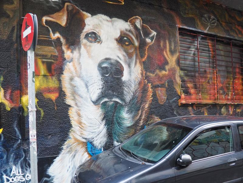 Athens Riot Dog