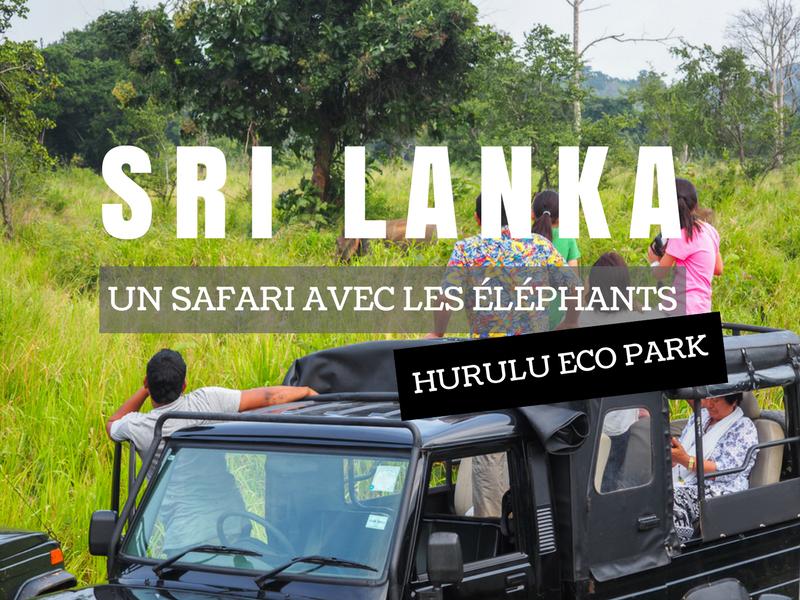 Où faire un safari avec les éléphants au Sri Lanka?