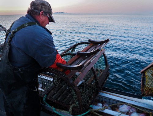 Pêcheur de homards aux îles de la Madeleine