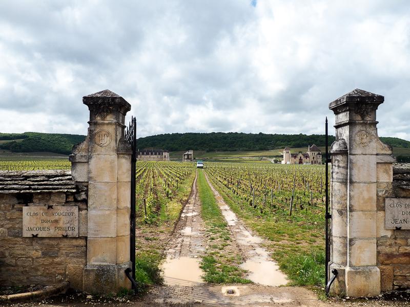 Côte d'Or en Bourgogne, France.