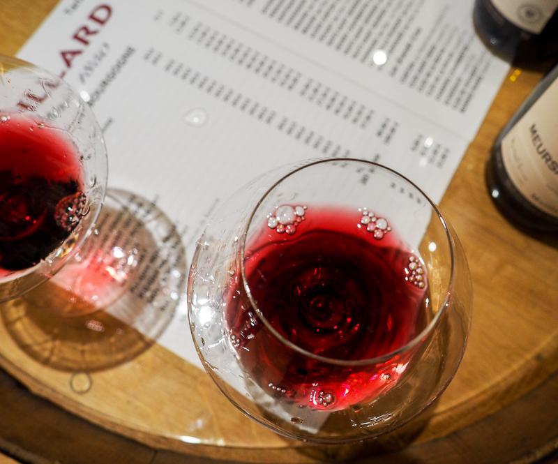 Dégustation de vins en Bourgogne.