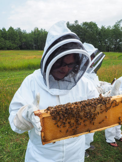 Annie tient un rayon de la ruche à la Miellerie Charlo