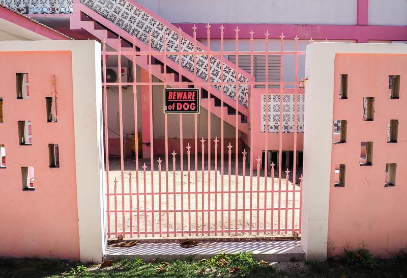 Maison rose croisé en vélo sur l'île de Caye Caulker