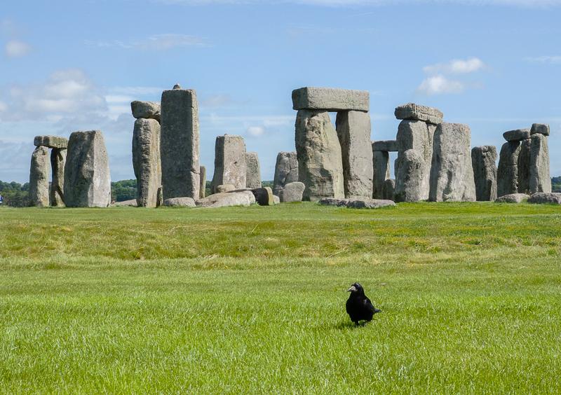 Corbeau devant le monument de Stonehenge en Angleterre