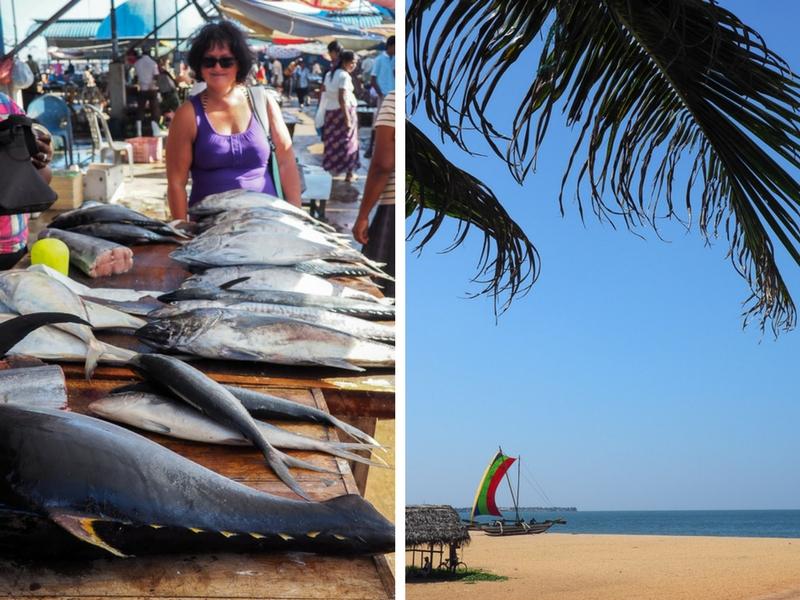 Quoi faire à Negombo au Sri Lanka