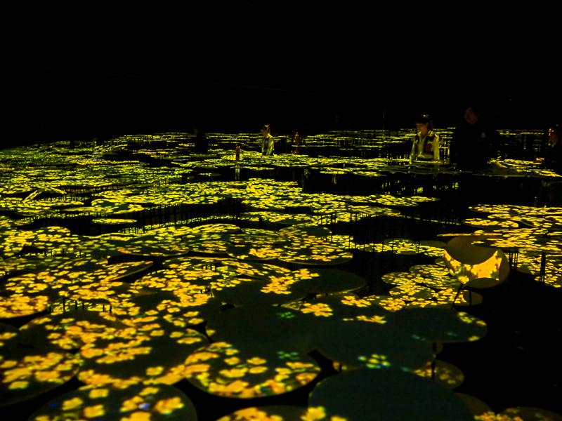 Salle Memory of Topography de l'exposition TeamLab Borderless de Tokyo