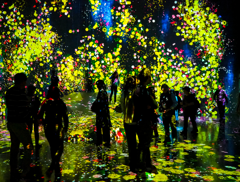 Salle Forest of Flowers and People à l'exposition TeamLab Borderless de Tokyo