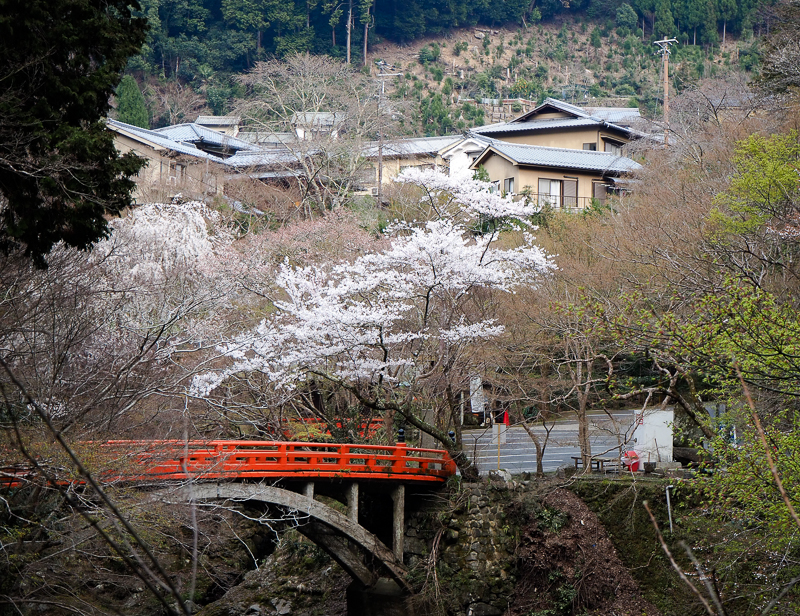 Randonnée près de mon ryokan à Kyoto. Vues sur un pont orangé et des maisons traditionnelles japonaises.