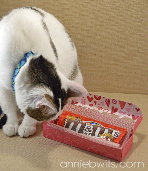 Valentine's Day Candy Boxes by Annie Williams - Photobomb