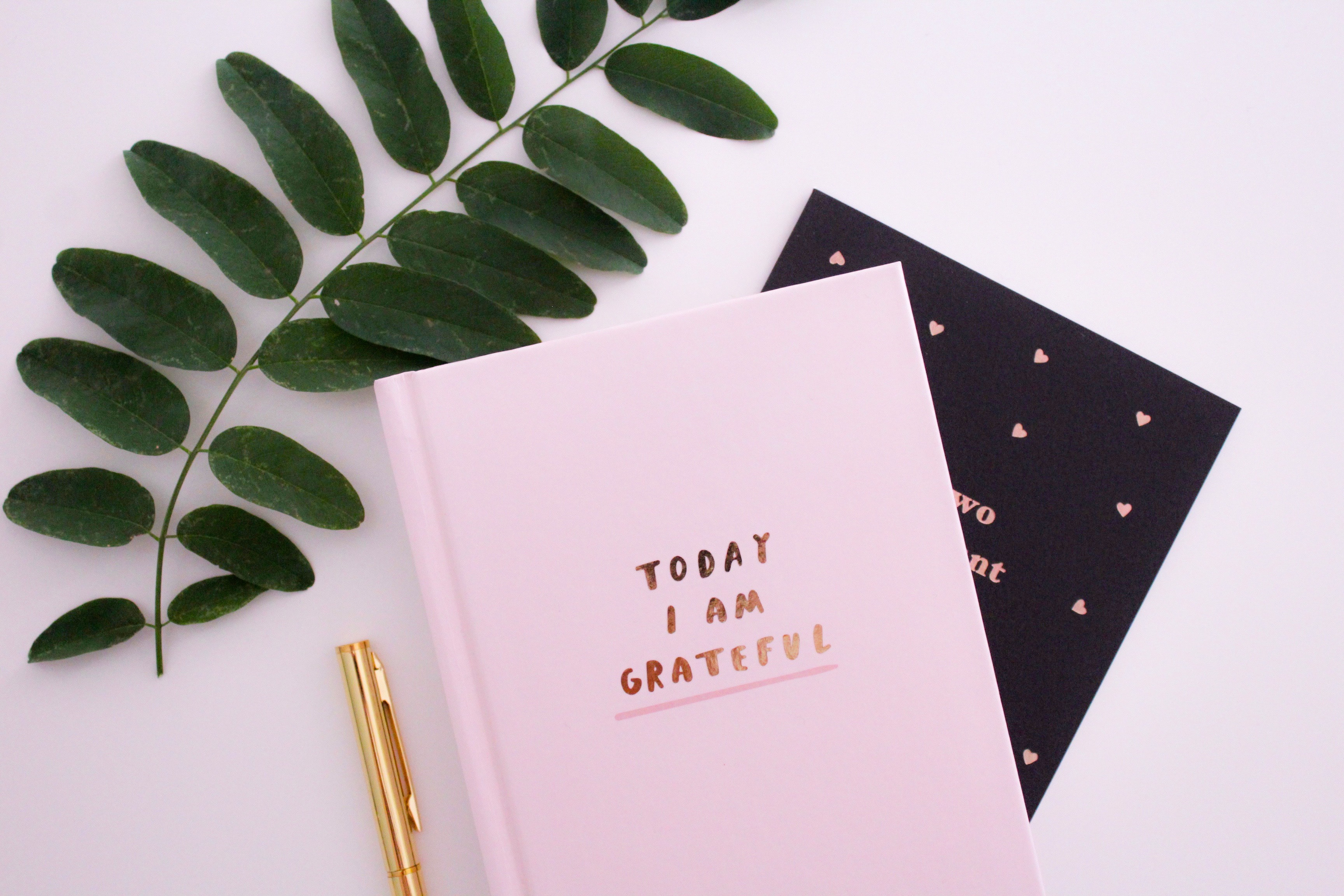 5 Things: Gratitude