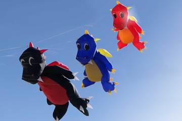 Dragons volants à Berck