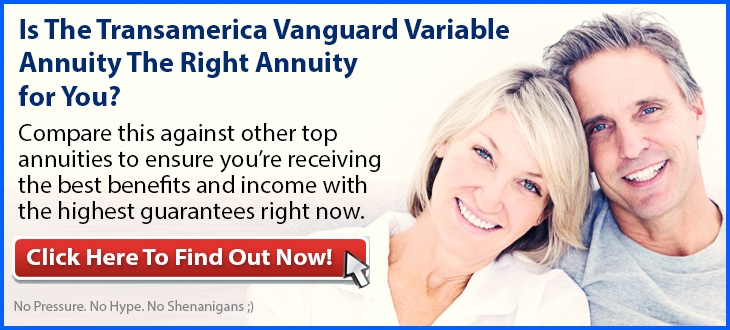 Independent Review of the Transamerica Vanguard Variable Annuity