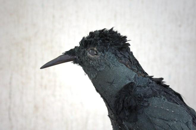 victorian bird