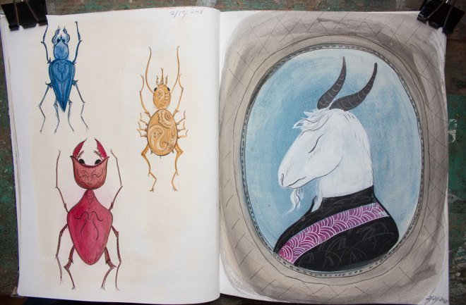 sketchbook : insects and goat portrait