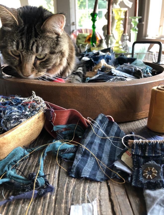 cat in the scrap basket