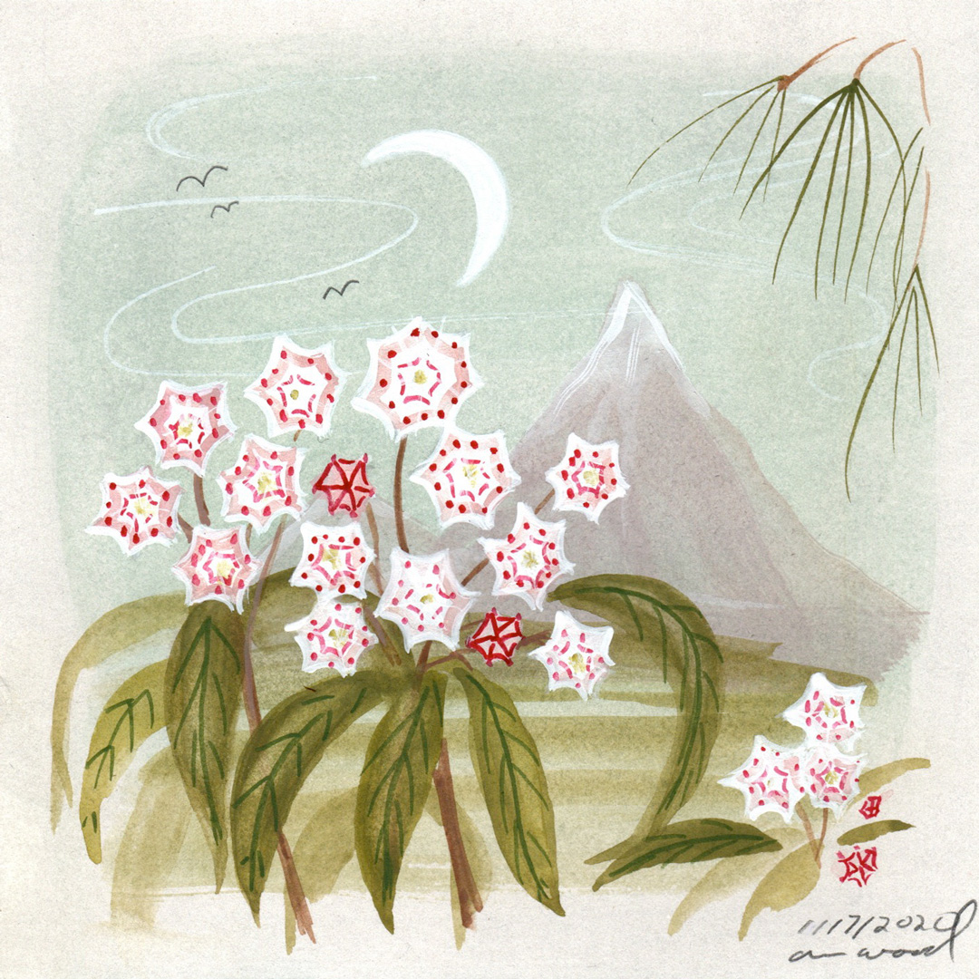 small painting : mountain laurel