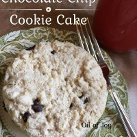 Chocolate Chip Cookie Cake! Egg/Nut/Gluten/Dairy Free * THM E!