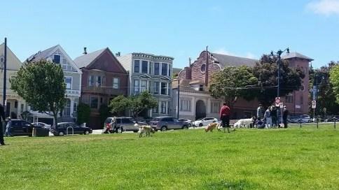 duboce park san francisco