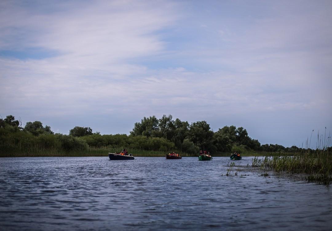 barci delta