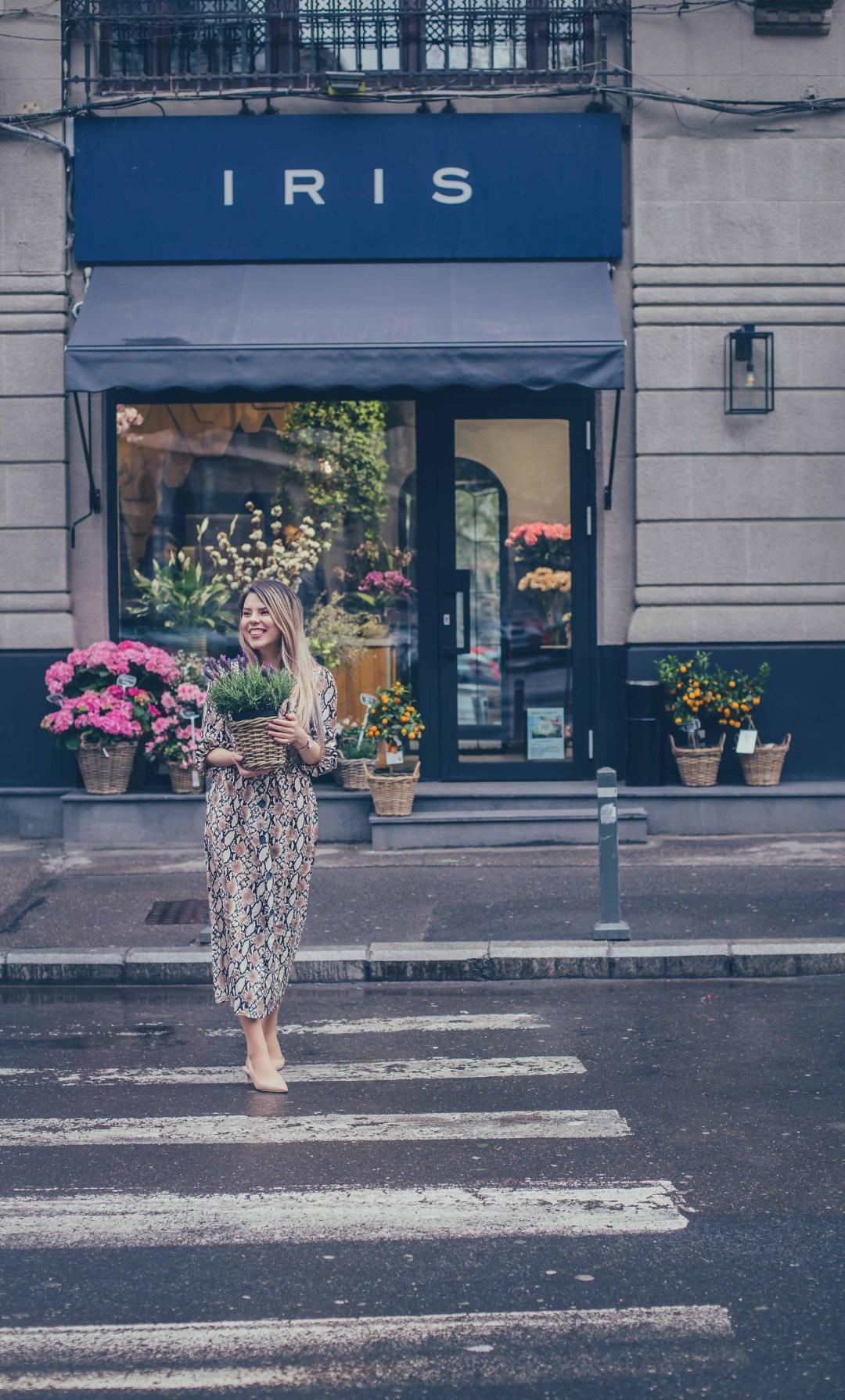 iris flower shop