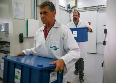 Embrapa envia sementes brasileiras para banco mundial na Noruega