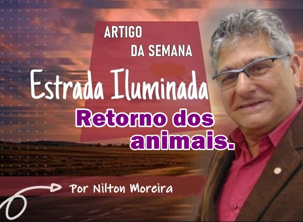 Retorno dos animais – Coluna Nilton Moreira