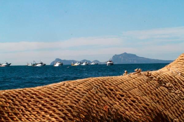 Da domenica fine stock Italia,mangeremo solo pesce importato