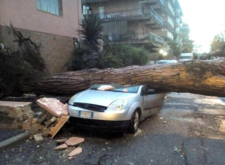 I danni del tornado a Ladispoli (foto da Alessio Campana) © ANSA