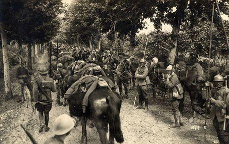 Caporetto, linea del Piave (da Wikipedia) © Ansa
