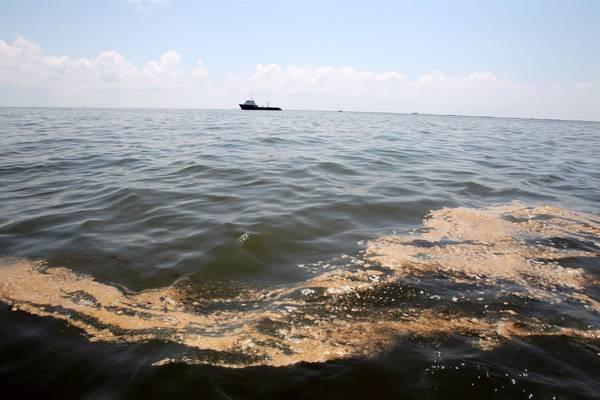 Marea nera al largo di Rio
