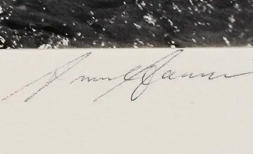 Ansel signature